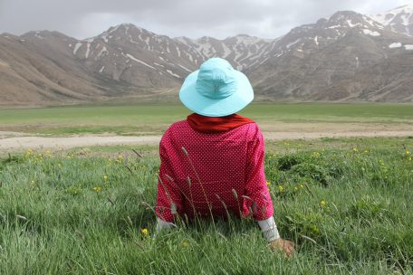 Person sitting on grass looking at mountains